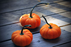 Three pumpkins Stock Images