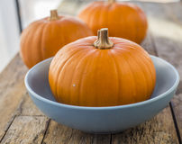 Three pumpkins on wooden background Royalty Free Stock Photo