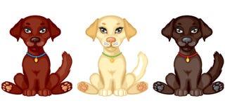 Three puppies Stock Photos
