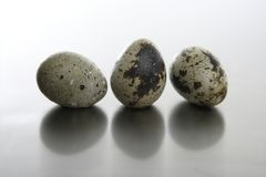 Three quail eggs Royalty Free Stock Photography
