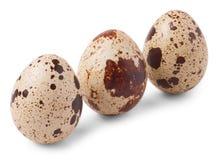 Three quail eggs isolated on white background Royalty Free Stock Image