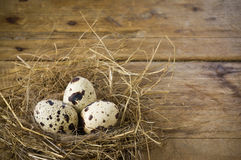 Three quail eggs in the nest. On wooden background Royalty Free Stock Photo