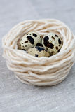 Three quail eggs in the nest with thread Stock Image