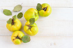 Three quinces on background board Stock Images