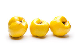 Three Quinces pear Stock Photos