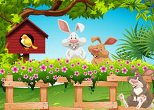 Three rabbits in the garden. Illustration Stock Images