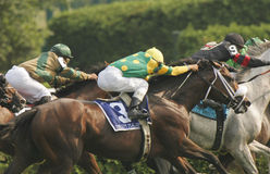 Three Racing Jockeys and Horses. Three jockeys compete in a thoroughbred horse race royalty free stock photography