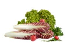 Three radish and lettuce leaves Royalty Free Stock Photos