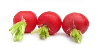 Three radishes. The radish (Raphanus sativus) is an edible root vegetable of the Brassicaceae family that was domesticated in Europe in pre-Roman times. They are Stock Photography