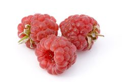 Three raspberries Royalty Free Stock Images