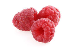 Three raspberries. Stock Photos