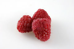 Three Raspberries Stock Photo