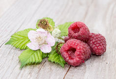 Three Raspberries with leaves Stock Photos