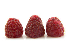 Three raspberries in a row Royalty Free Stock Photography