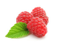 Three raspberry berries isolated Stock Photography