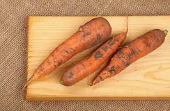Three raw carrots at wooden board on canvas Royalty Free Stock Image
