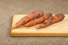 Three raw carrots at wooden board on canvas Stock Images