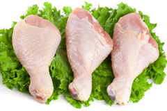 Three raw chicken drumsticks with lettuce leaf isolated on white background.  royalty free stock photo