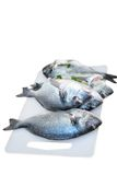 Three raw fish on a cutting board isolated Stock Image