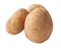 Three raw potatoes. Freshly pulled from the ground isolated with clipping path included Stock Photo