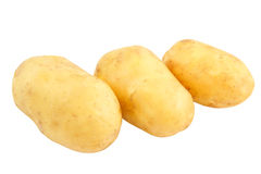 Three raw potatoes isolated Royalty Free Stock Images