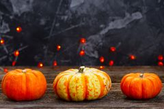 Fall harvest of pumpkins Royalty Free Stock Image