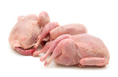 Three raw quail stock photo