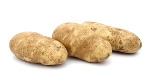 Three Raw Russet Potatoes Stock Image