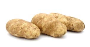 Three Raw Russet Potatoes Stock Image