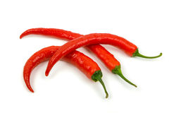 Three recently rinsed chili peppers. Three recently rinsed red chillies on a white background Royalty Free Stock Photos