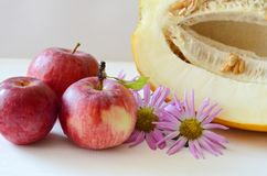 Apples and cut the melon next to the flowers Aster on a white background royalty free stock photo
