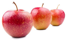 Three Red Apple Isolated Royalty Free Stock Photo
