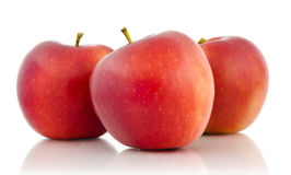 Three red apples. Isolated on white background royalty free stock photos