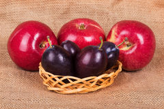 Three red apples and four plums Stock Image