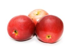 Three red apples isolated on the white Stock Images