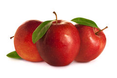 Three red apples with leaves Stock Image