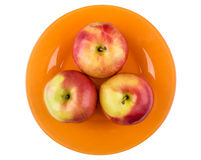 Three red apples in orange plate isolated on white Royalty Free Stock Photos