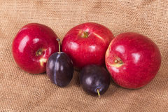 Three red apples and two plums Stock Photography