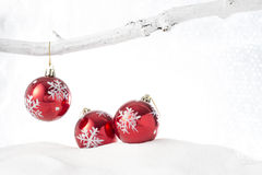 Three red baubles Stock Image