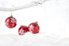 Three red baubles on a snowy background Stock Image