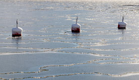 Three red buoy in the cracked ice Stock Photos
