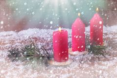 Winter decoration with mandarins and burning candles and fir branches. Against the backdrop of snow Royalty Free Stock Photo