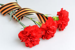 Three red carnations tied with Saint George ribbon on gray Stock Images