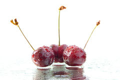 Three red cherries Royalty Free Stock Images