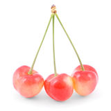 Three red cherries Stock Photos