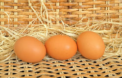 Three red chicken eggs Royalty Free Stock Image