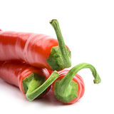 Three red chili peppers royalty free stock photo