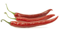 Three red chili peppers Stock Images