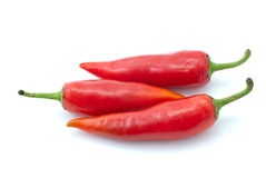 Three red chili peppers. Isolated on the white background Royalty Free Stock Photo