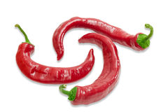 Three red chili peppers on a light background Stock Images